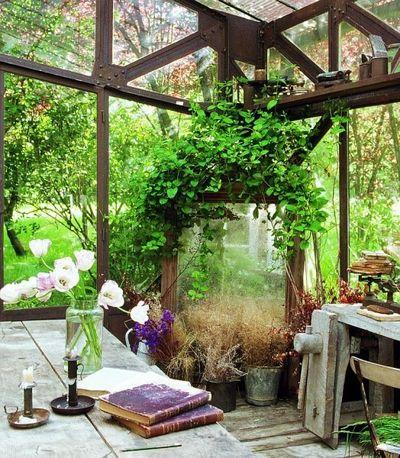 The-garden
